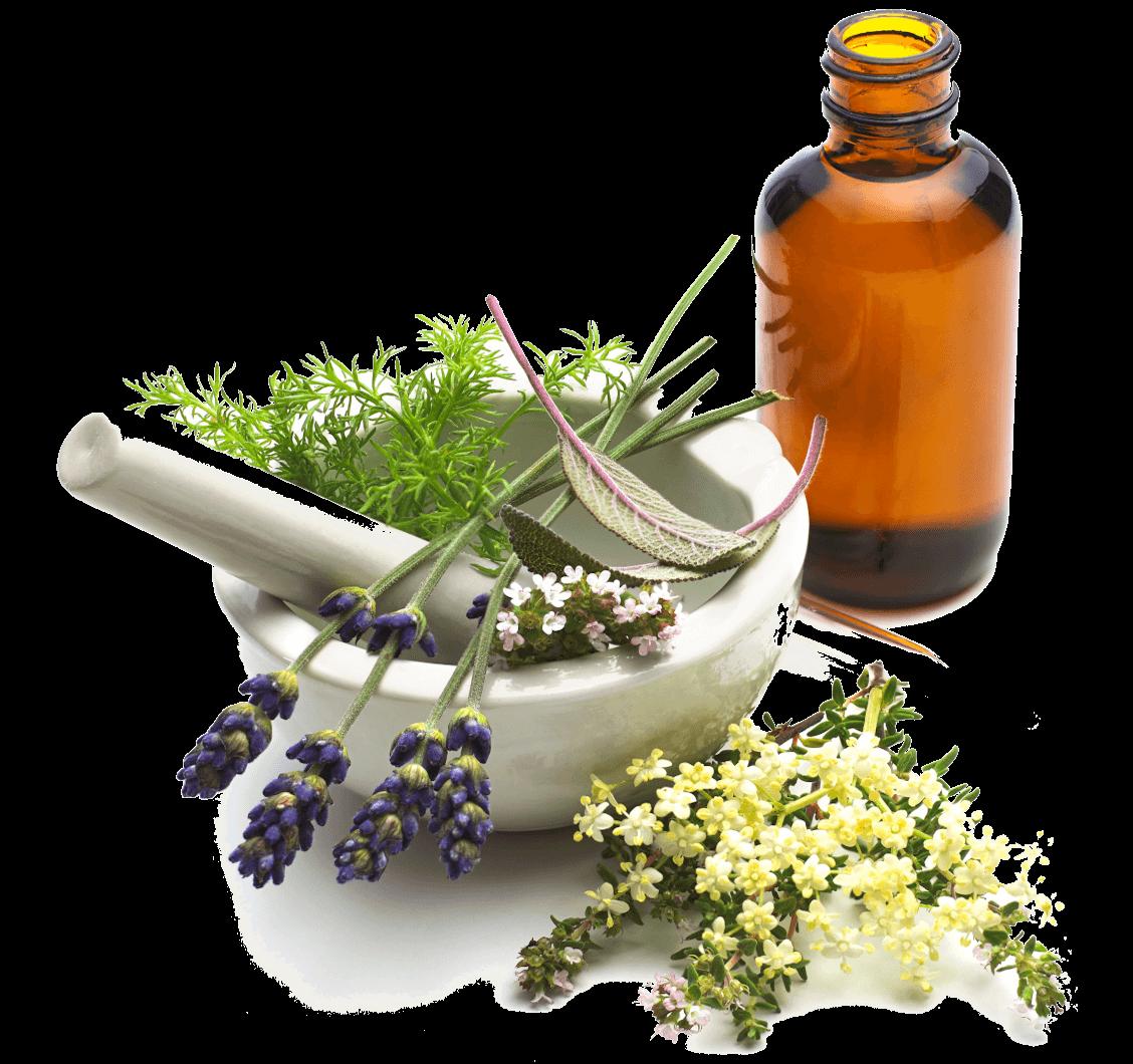 farmaci-parafarmaci-torino