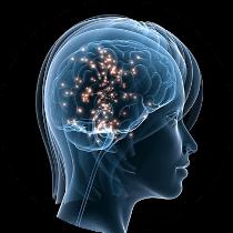 farmacie-torino-profili-ormonali